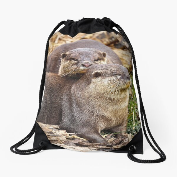 Otter-ly in Love Drawstring Bag