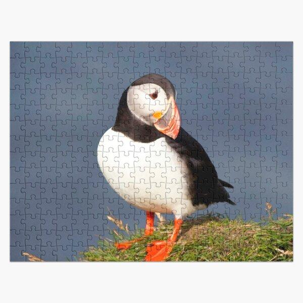 Watercolor Bird, Atlantic Puffins 45, Westman Islands, Iceland Jigsaw Puzzle