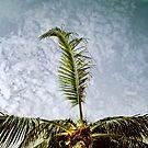 Cancun01 by tuetano