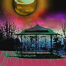 Shiney moon above bandstand by John Lynch