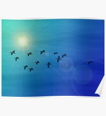 Flock of birds in a sunny sky Poster