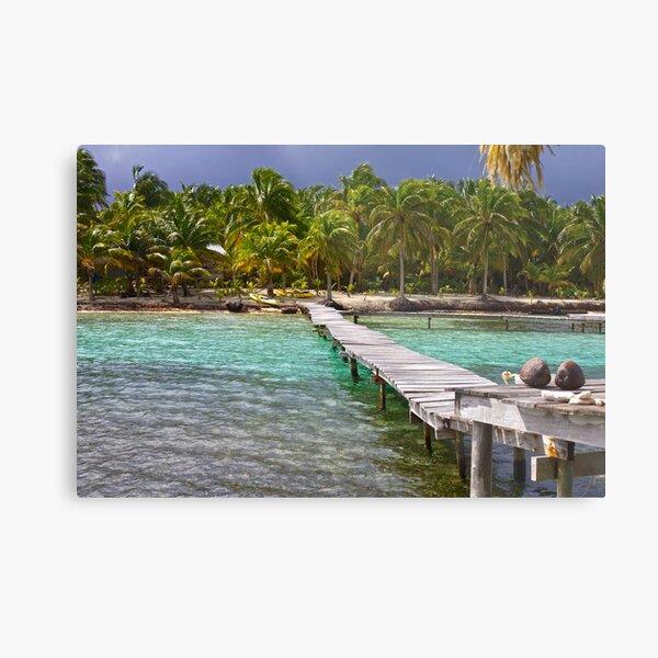 Glover's Reef, Belize Metal Print