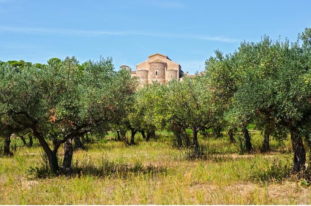 Medieval Abbey - Fossacesia - Italy  by Andrea Mazzocchetti
