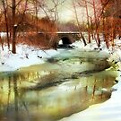 Winter Waters by Jessica Jenney
