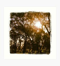 Brentwood & Trees Art Print