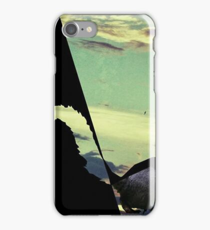 black squirrel  iPhone Case/Skin