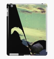 black squirrel  iPad Case/Skin
