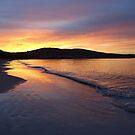 Howrah Beach on an early walk, Hobart, Tasmania, Australia by PC1134