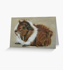 """Lucky"" Gorgeous Guinea Pig Greeting Card"