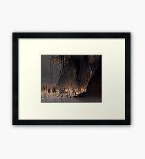 Dawn at Caddo Lake Framed Print