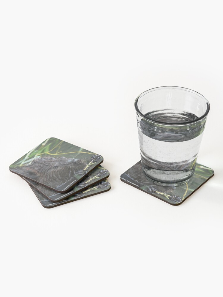 Alternate view of The hungry beaver By Yannis Lobaina Coasters (Set of 4)