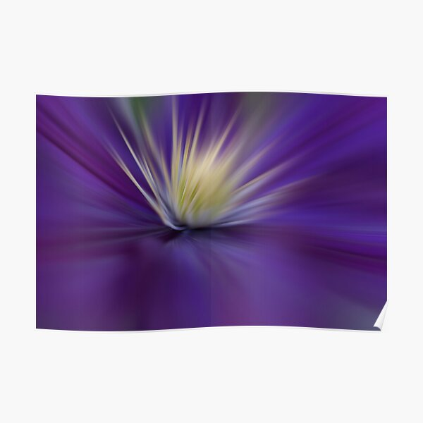 Clematis - Abstract Poster