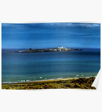 The Farne Islands Poster