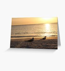 Beach Gulls Greeting Card
