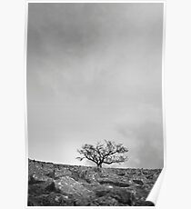 The Desolate Tree Poster