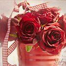 Valentine  by SandraRos
