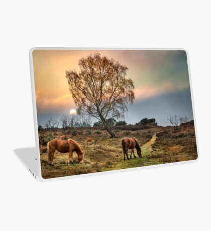 New Forest Ponies Laptop Skin