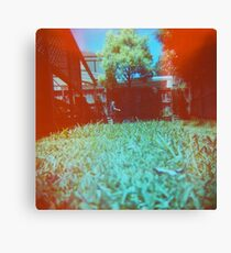 Lawnmowing Canvas Print