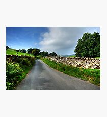 Swaledale Lanes Photographic Print