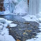 Johnston Canyon falls in a freeze by James Anderson