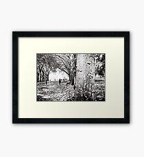 Fitzroy Gardens Framed Print
