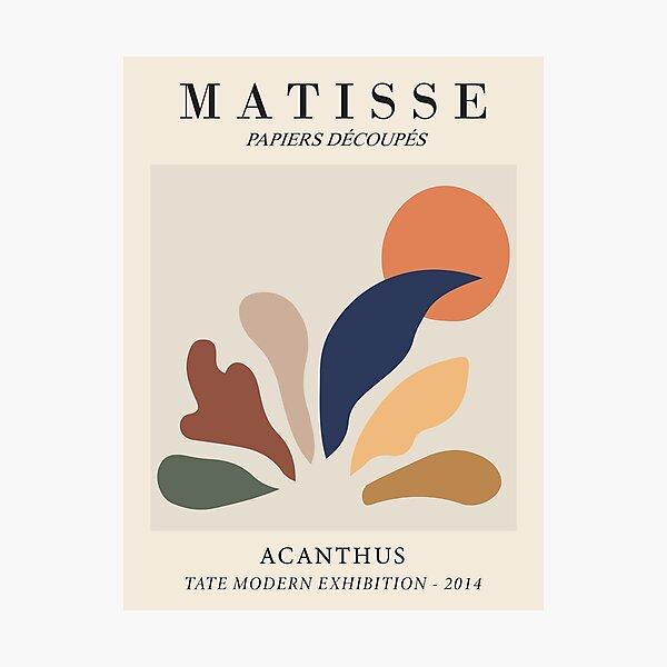 Henri Matisse - Acanthus - Papiers Découpés Photographic Print