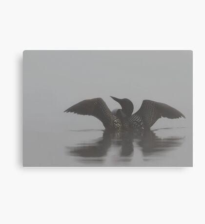 Common loon  Canvas Print