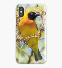 Lesser Masked Weaver iPhone Case/Skin