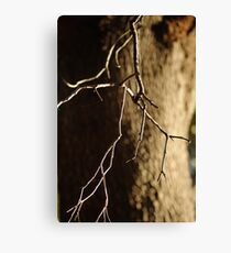 A Matter of Scale Canvas Print