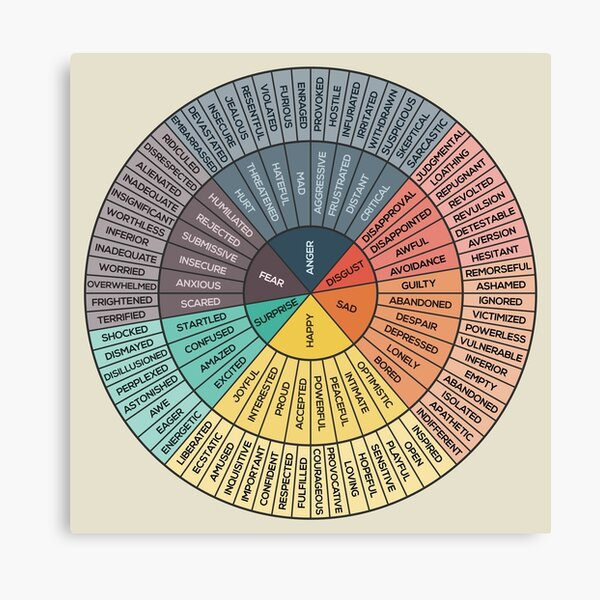 Wheel Of Emotions Canvas Print