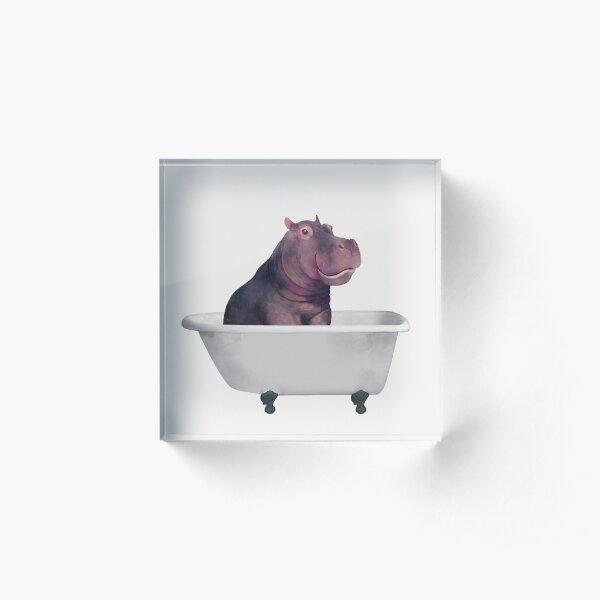 Hippo in the bathtub Acrylic Block