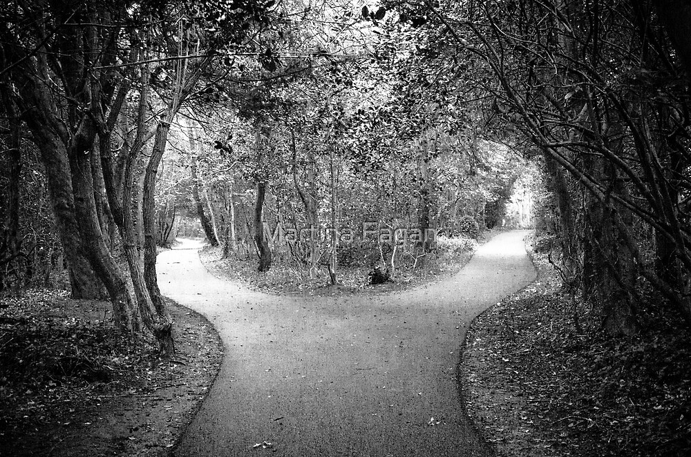 Which way.......... by Martina Fagan