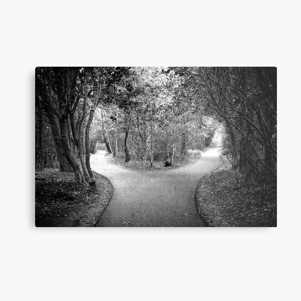 Which way.......... Metal Print