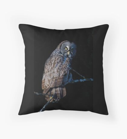 Spotlit - Great Grey Owl Throw Pillow