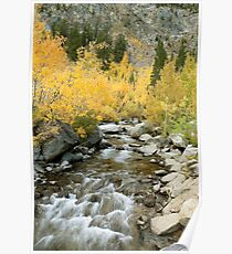 Fall Colors And Rushing Stream - Eastern Sierra Poster