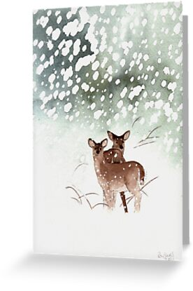 Deer in the Forest by Ray Shuell