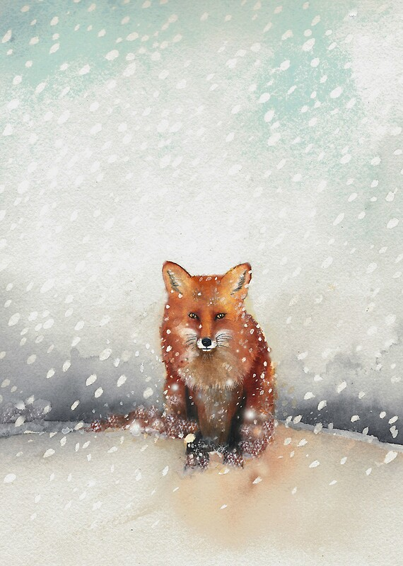 Quot Red Fox In The Snow Quot By Ray Shuell Redbubble