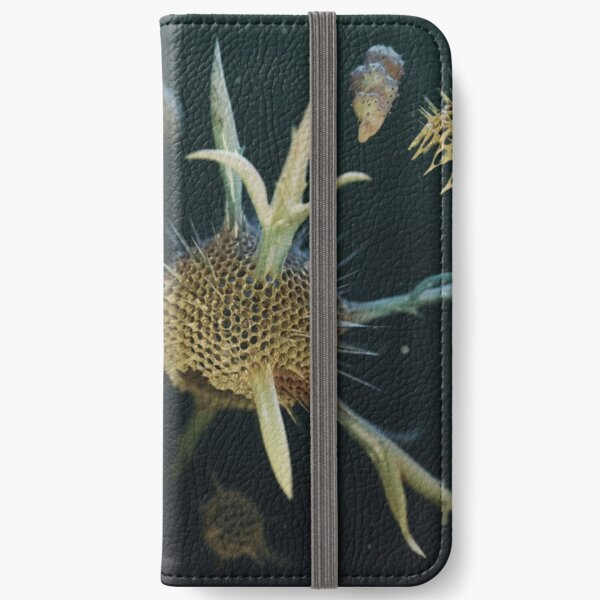 Radiolaria et Foraminifera 2019 edition iPhone Wallet