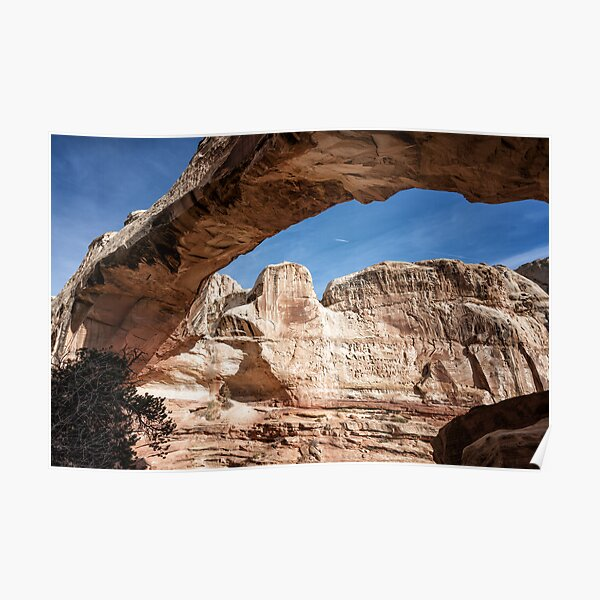 Arched Poster