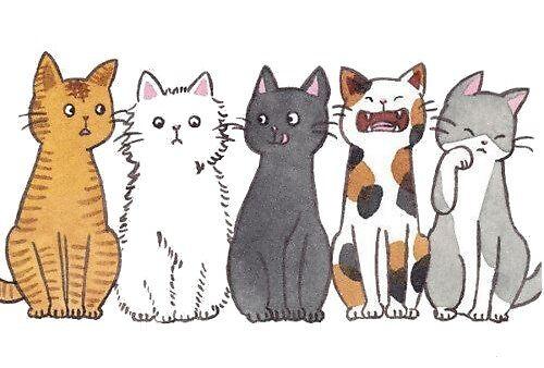 So many cats! by annafama