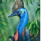 Cassowary by owen  pointon