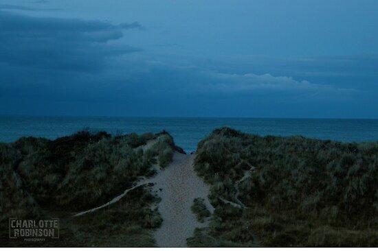 Hemsby Sand Dunes by Charlotte Robinson