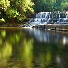 Summertime at the Falls by Glenda Williams