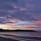 The colour purple - Howrah, Tasmania, Australia. by PC1134