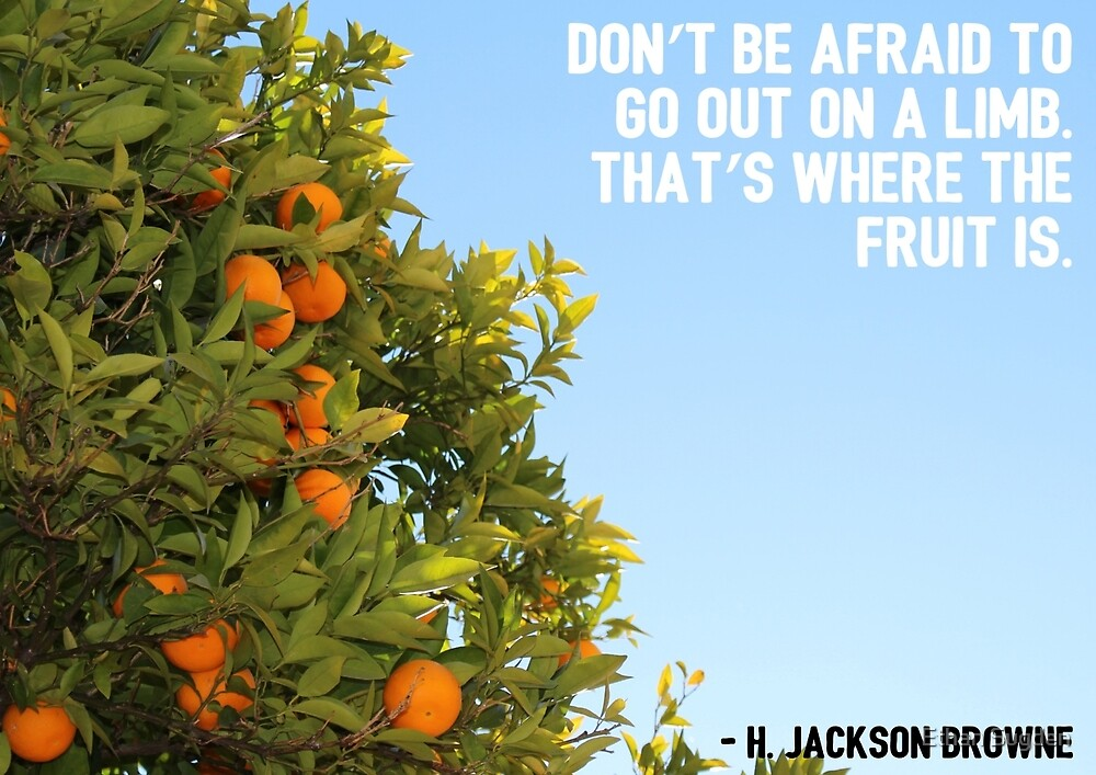 Don't be afraid to go out on a limb. by Ethan Sugden