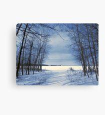 Wintertime At Sheldon Marsh Canvas Print