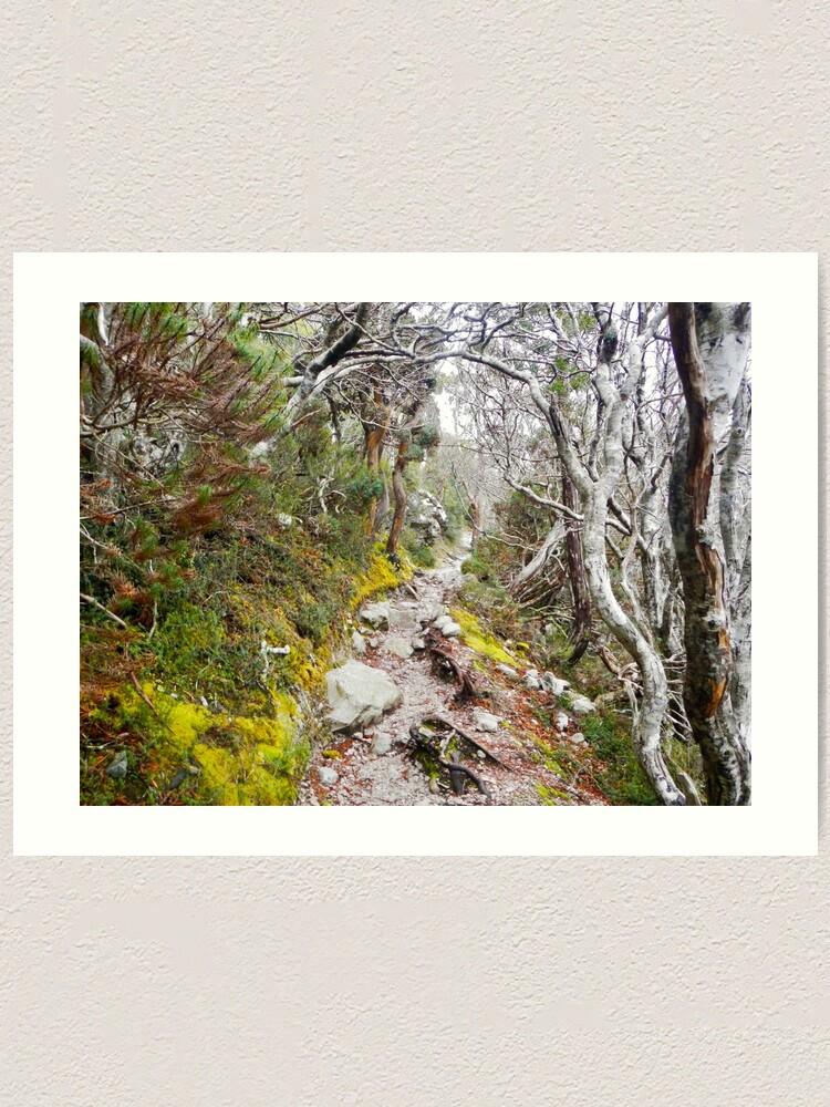 Alternate view of Winter Walk, Wilsons Promontory Art Print