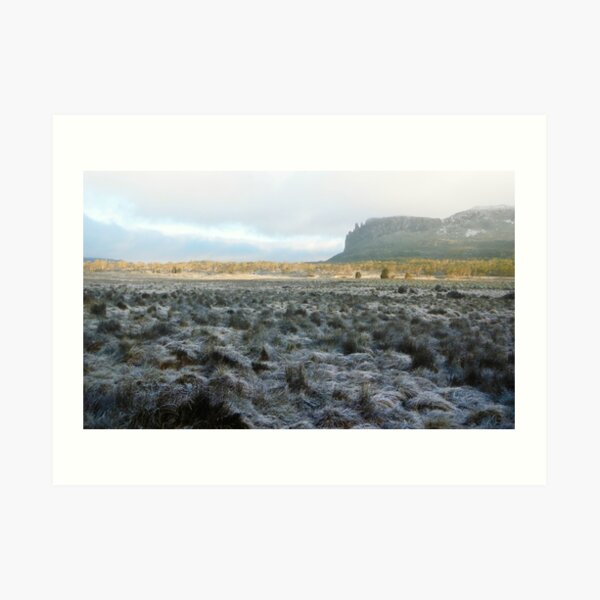 Morning Frost, Mt Oakleigh, The Overland Track Art Print
