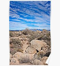 To the Sonoran Sky and Back Poster
