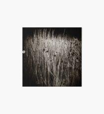{ reeds } Art Board